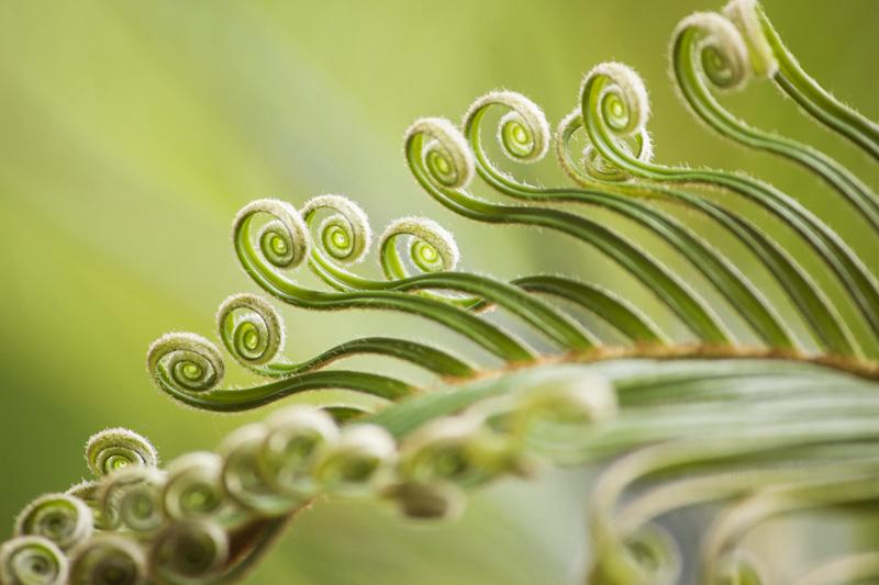 Teaser Paartherapie | Praxis Hypnose und Wandel | Hypnose | Hypnosetherapie | Freiburg Lörrach Basel