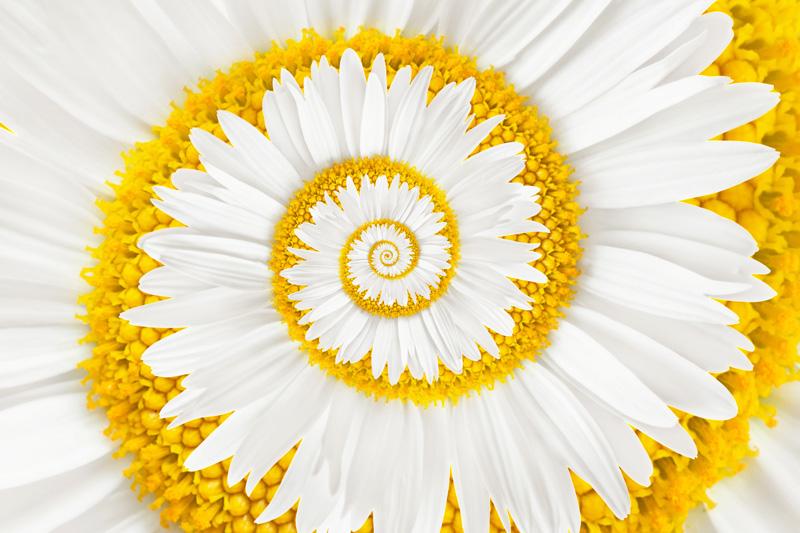 Teaser Coaching | Praxis Hypnose und Wandel | Hypnose | Hypnosetherapie | Freiburg Lörrach Basel